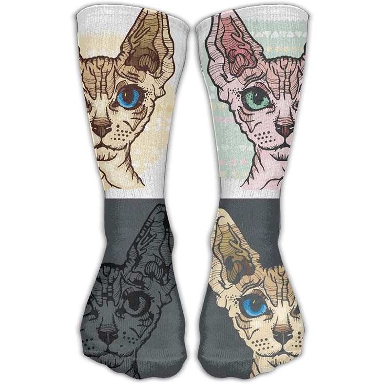 calcetines de gato